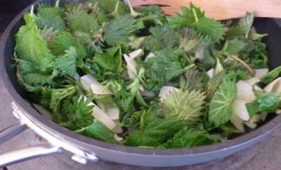 making stinging nettle soup