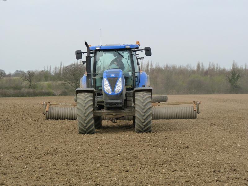 rolling grove field
