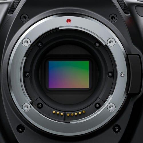 Blackmagic Pocket Cinema Camera Canada Price Annex Pro