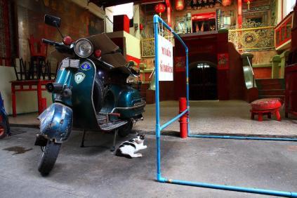 寺院の前にベスパとネコ。チャイナタウンの雰囲気が一枚の中に凝縮されている。