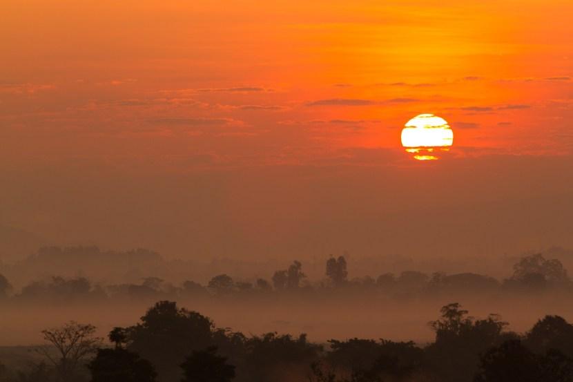 日の出。霧がぼんやり紅く彩られるのが幻想的だ。