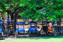 近場の観光に人力車もチョイスできる。