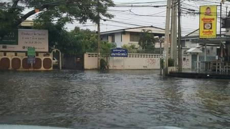 付近の小道も浸水