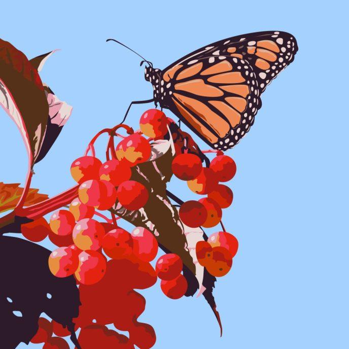 illustration-rabida1-01-1024x1024-1