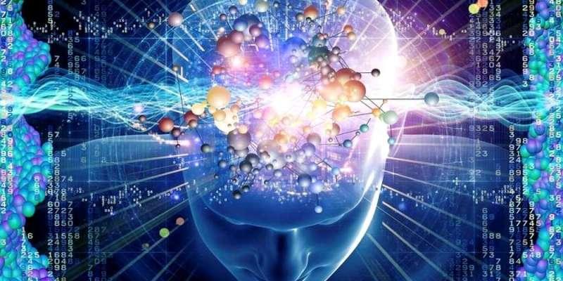 Comment Transformer Votre Cerveau En Méditant ?