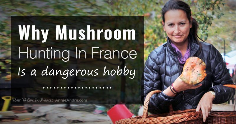 fb-mushroom-hunting-france