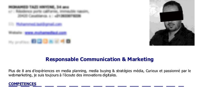 Example of a French CV Headline title and subheading meant to hook employers into reading the rest of your CV
