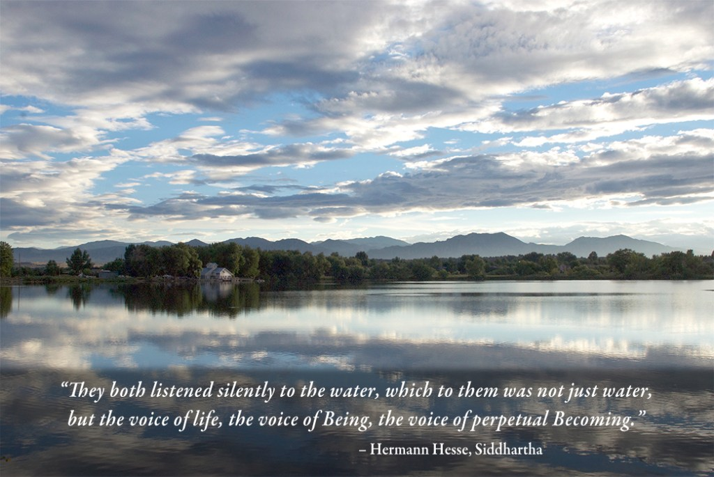 Contact me for website design. Hermann Hesse quote