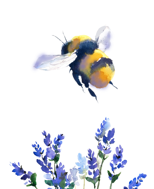 Website Design – Bumble bee and purple flowers