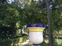 Murillo Gardens Seville