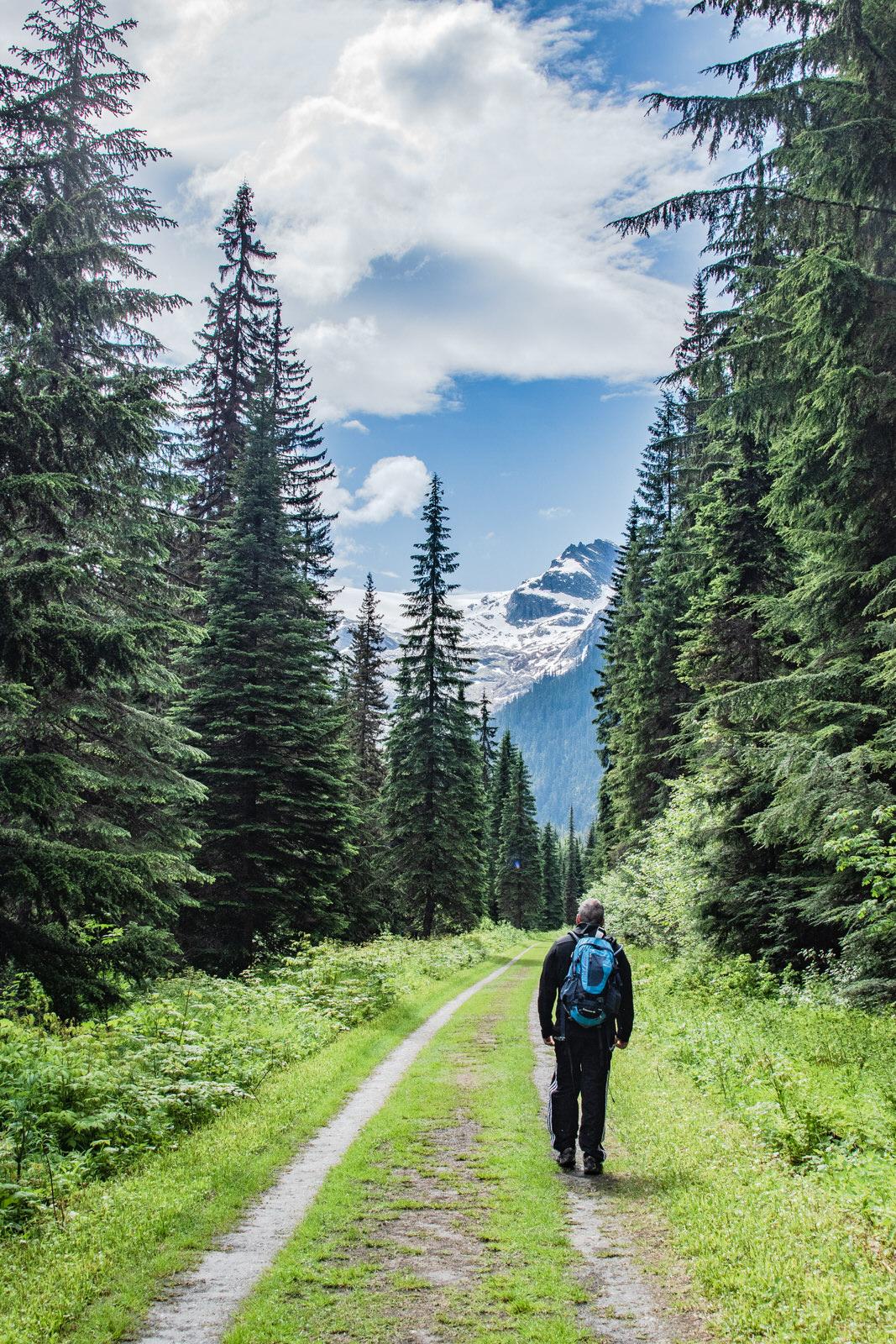 Great Glacier Trail
