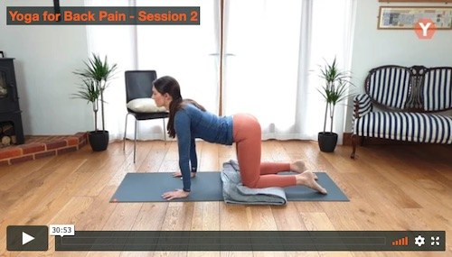 Yoga Stretch for Back Pain Relief