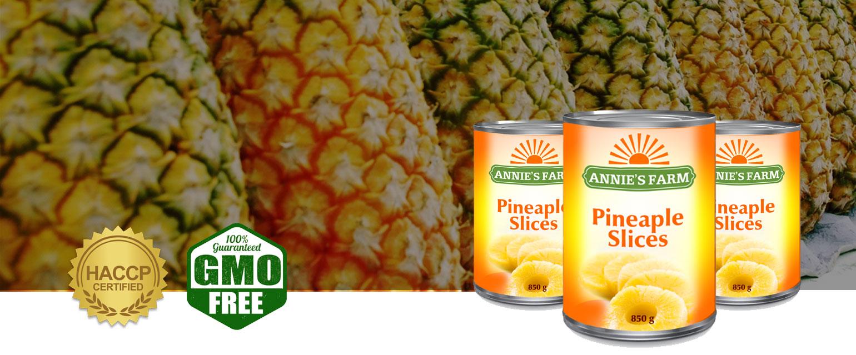 Pineapple slices slide annie's farm
