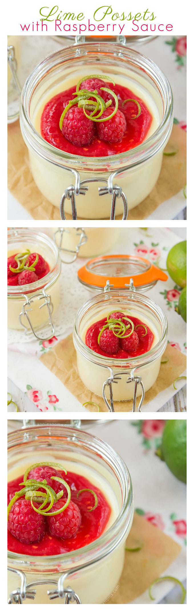These Lime Possets are velvety smooth, creamy and filled with fresh, tart lime juice. Topped with a fresh no-cook raspberry sauce and fresh raspberries, these are easy to make, yet totally divine!