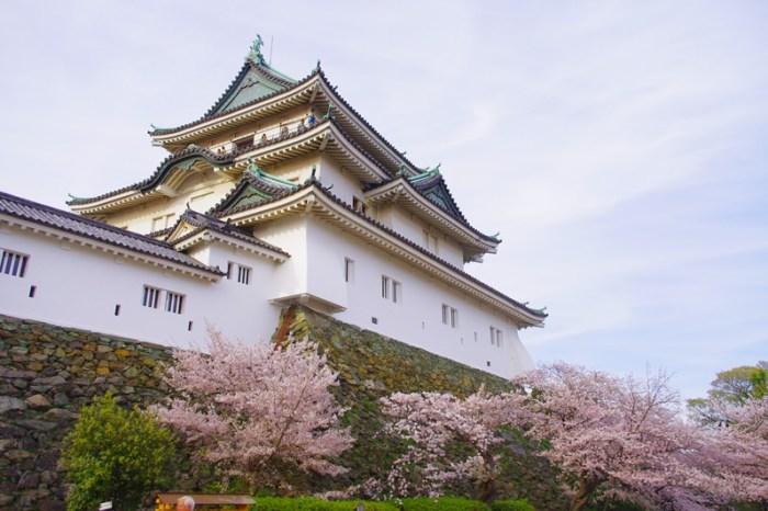 [2013花見] 賞櫻名所 – 和歌山城