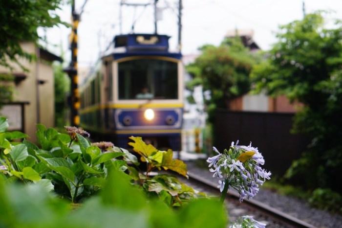 [神奈川] 鎌倉 倒數第二次戀愛散策 cafe 坂の下、極樂寺、御靈神社
