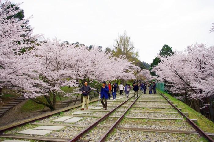 [2013花見] 京都 – 蹴上傾斜鐵道