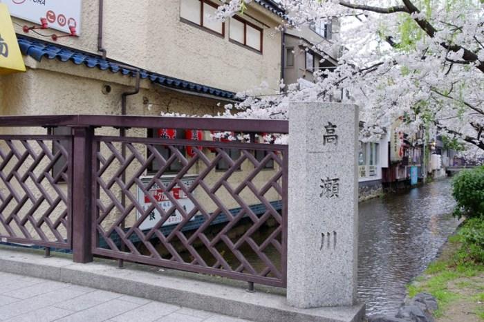 [2013花見] 鬧區中的櫻滿開 – 京都 高瀨川 木屋町通