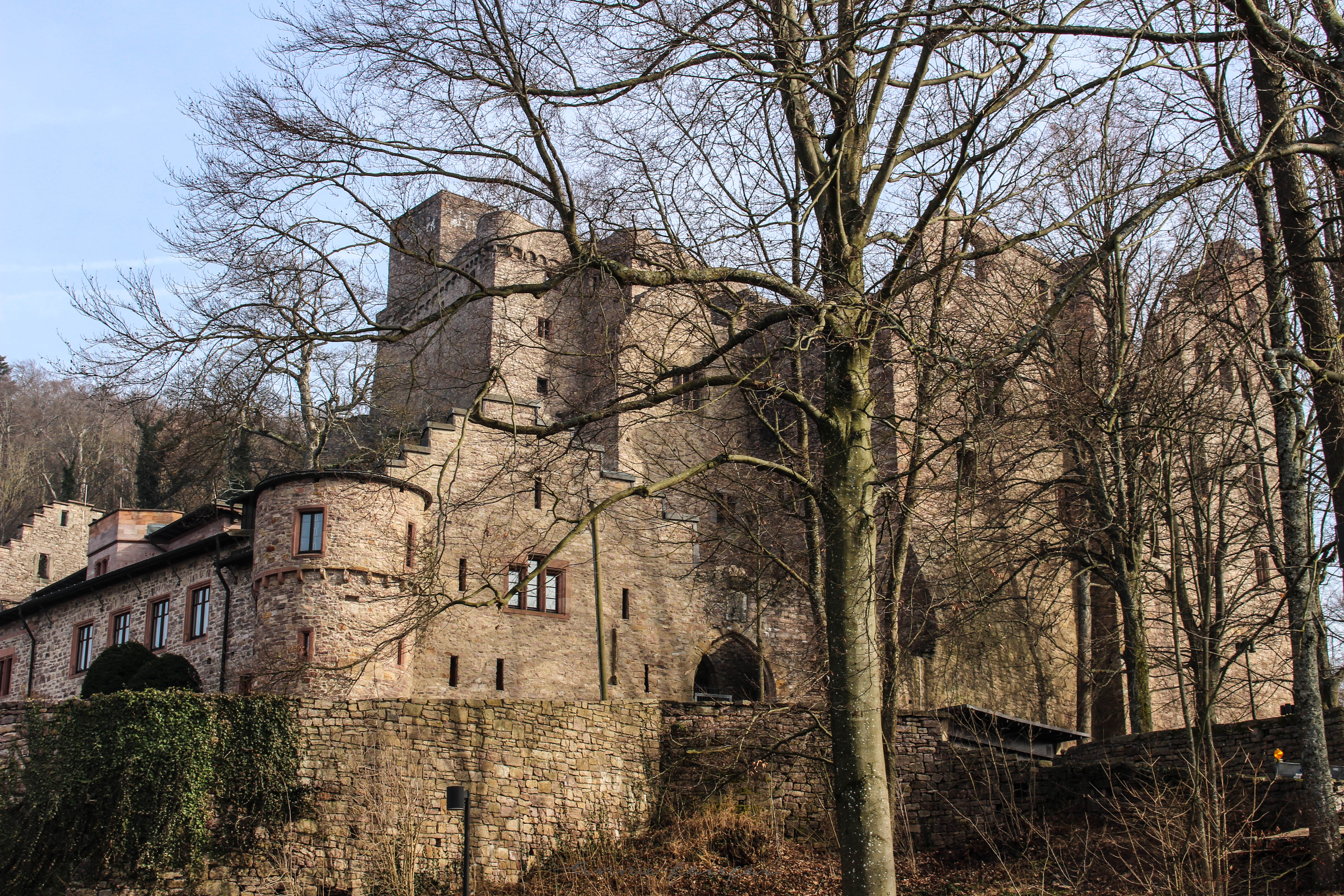 "Altes Schloss ""Old Castle"" in Black Forest, Germany. Built in 1102!"