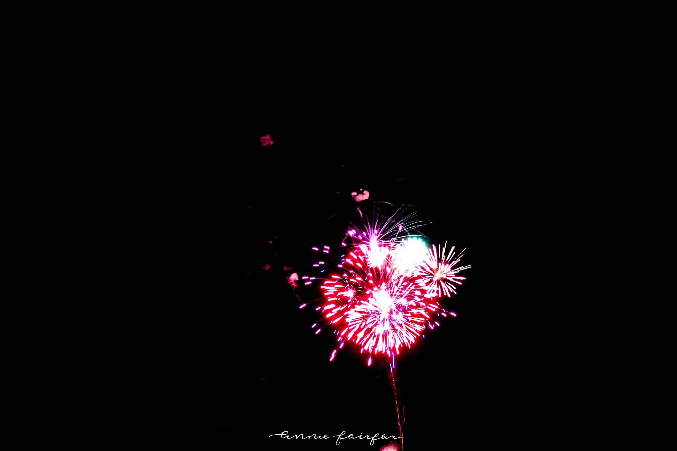 Tulip Time in Holland Mi Fireworks Display