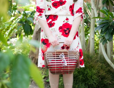 Red Floral Tie Sleeve Dress & Vintage Japanese Picnic Basket