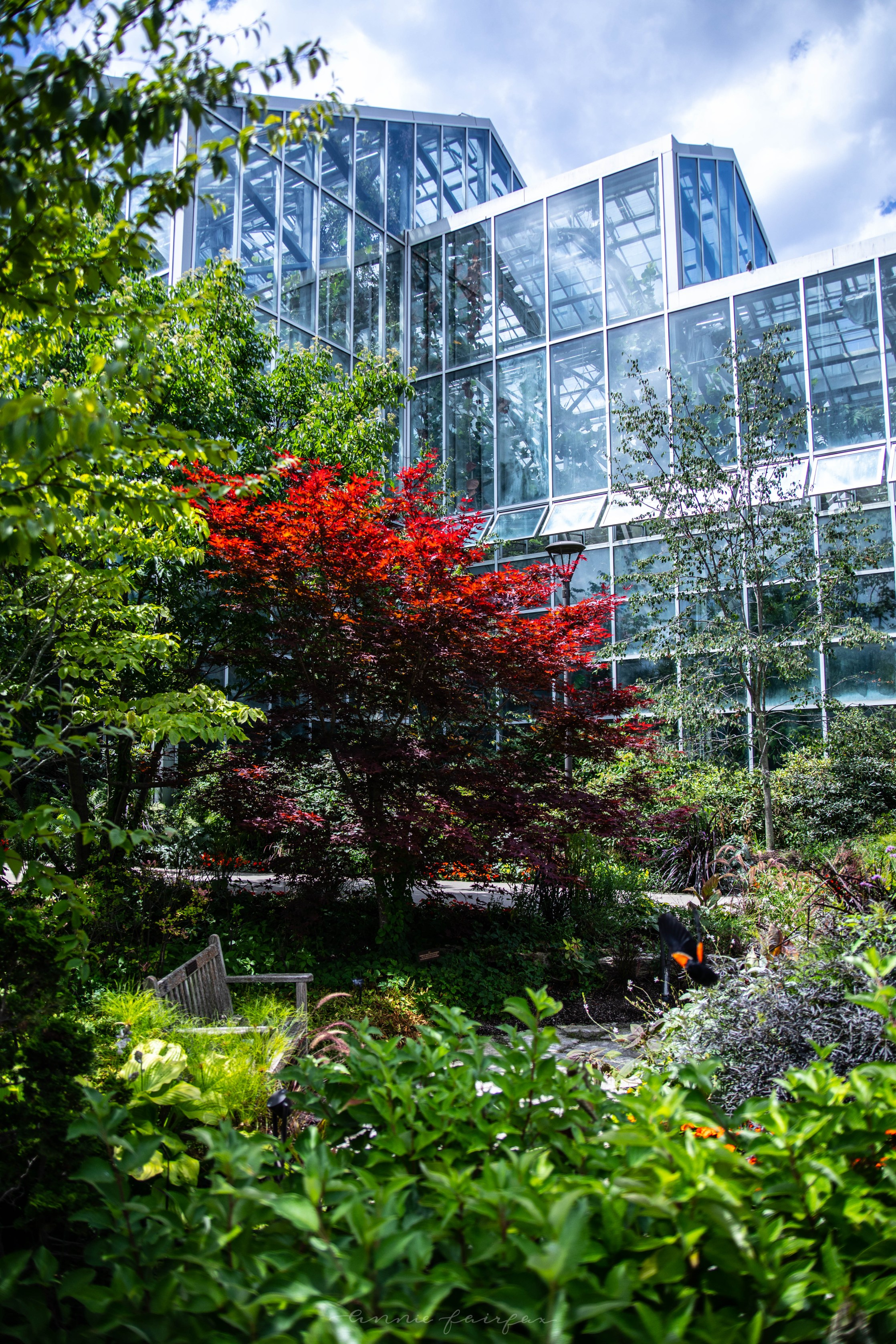 The Complete Traveler's Guide to Grand Rapids, Michigan What to Do in Grand Rapids Frederik Meijer Gardens