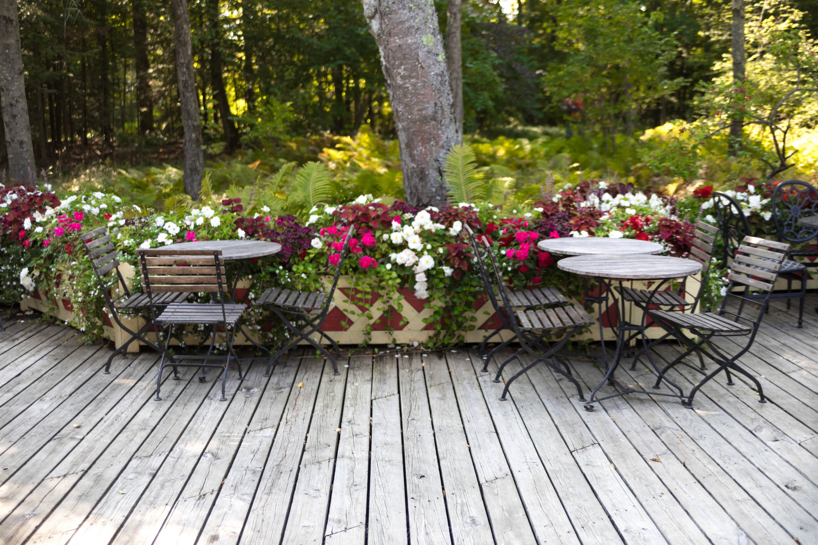 Photo of Woods Restaurant on Mackinac Island, Michigan Grand Hotel by Annie Fairfax Outdoor Dining