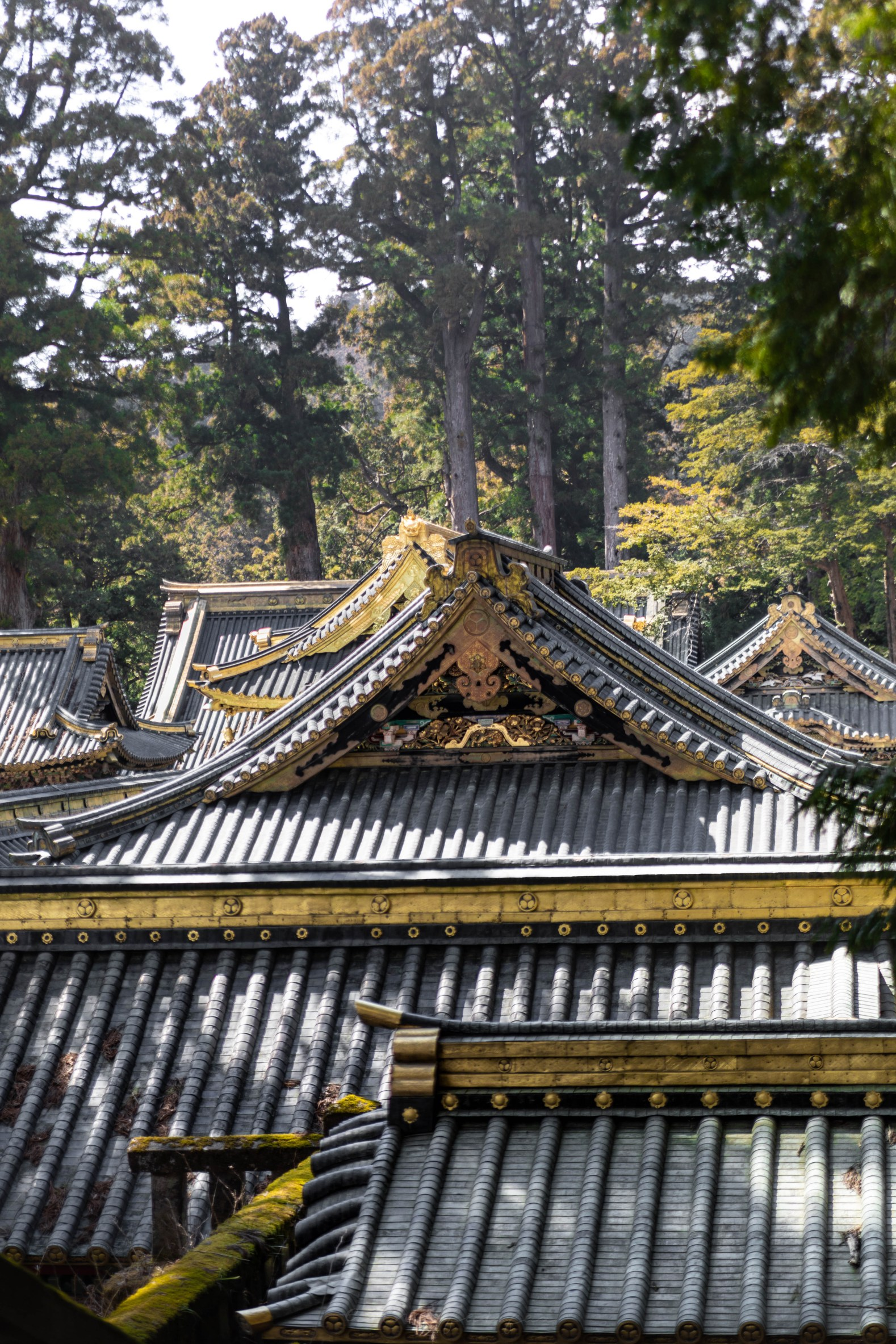 Golden Temples in Nikko, Japan, the Ultimate Travel Guide Written, Researched, and Photographed by Travel Writer & Photographer Annie Fairfax