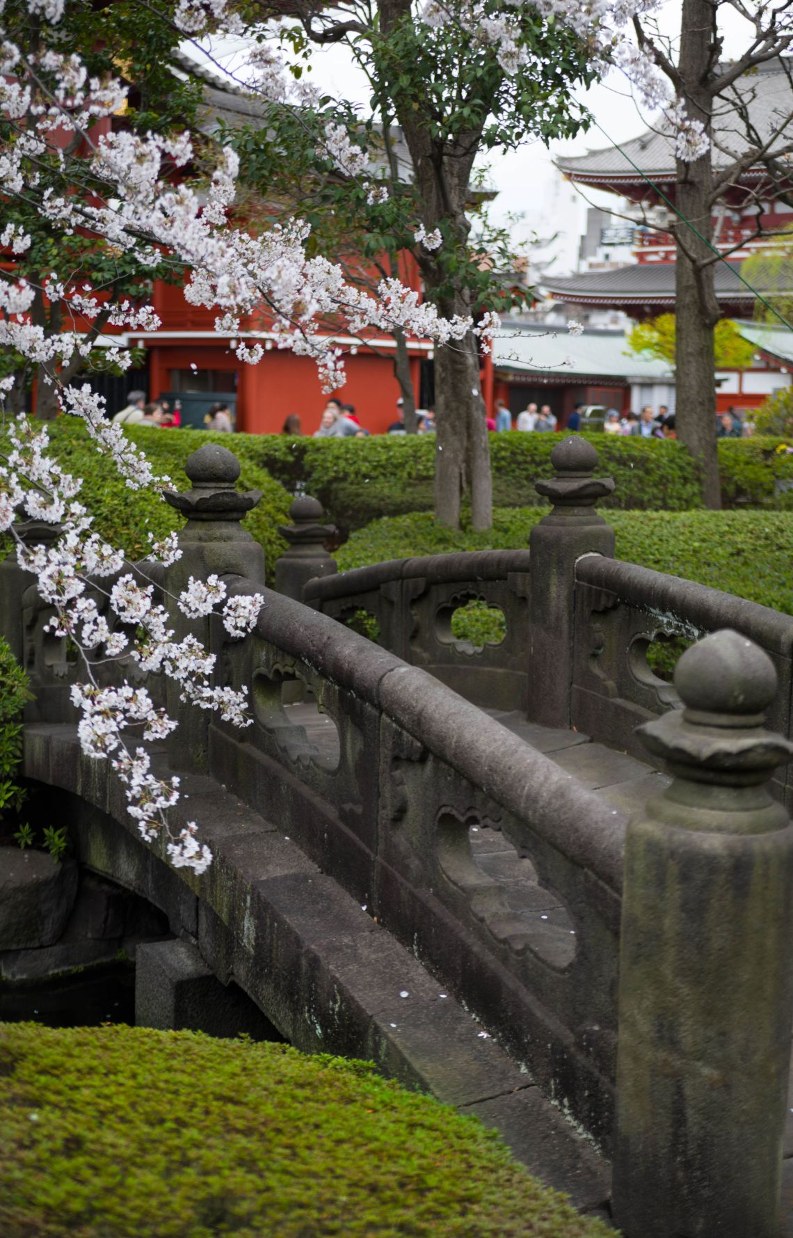 Stone Bridge Senso-Ji Temple Asakusa Kannon Buddhist Temple in Tokyo, Japan Shrine with Massive Red Japanese Paper Lanterns Near Tokyo Sky Tree Goddess of Mercy by Annie Fairfax Where to Visit Tokyo Things to do In Tokyo, Japanese Travel Tourism Trip Inspiration Pictues of tokyo Japan