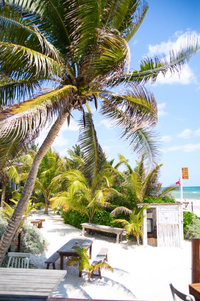 Tulum: The Luxury Travel Guide