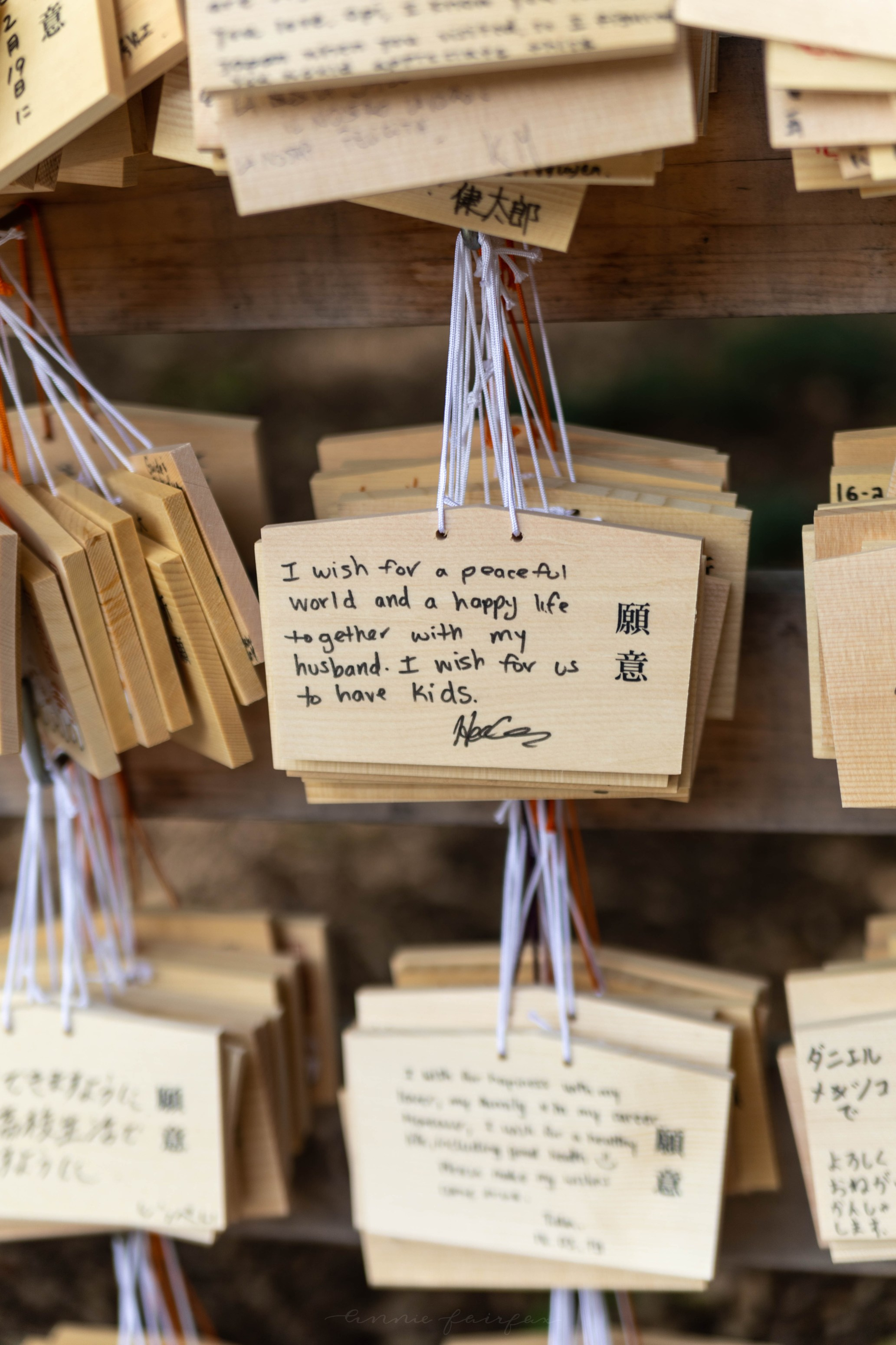 What to Know Before Visiting Meiji Shrine in Tokyo, Japan Ema Wishing Tablets