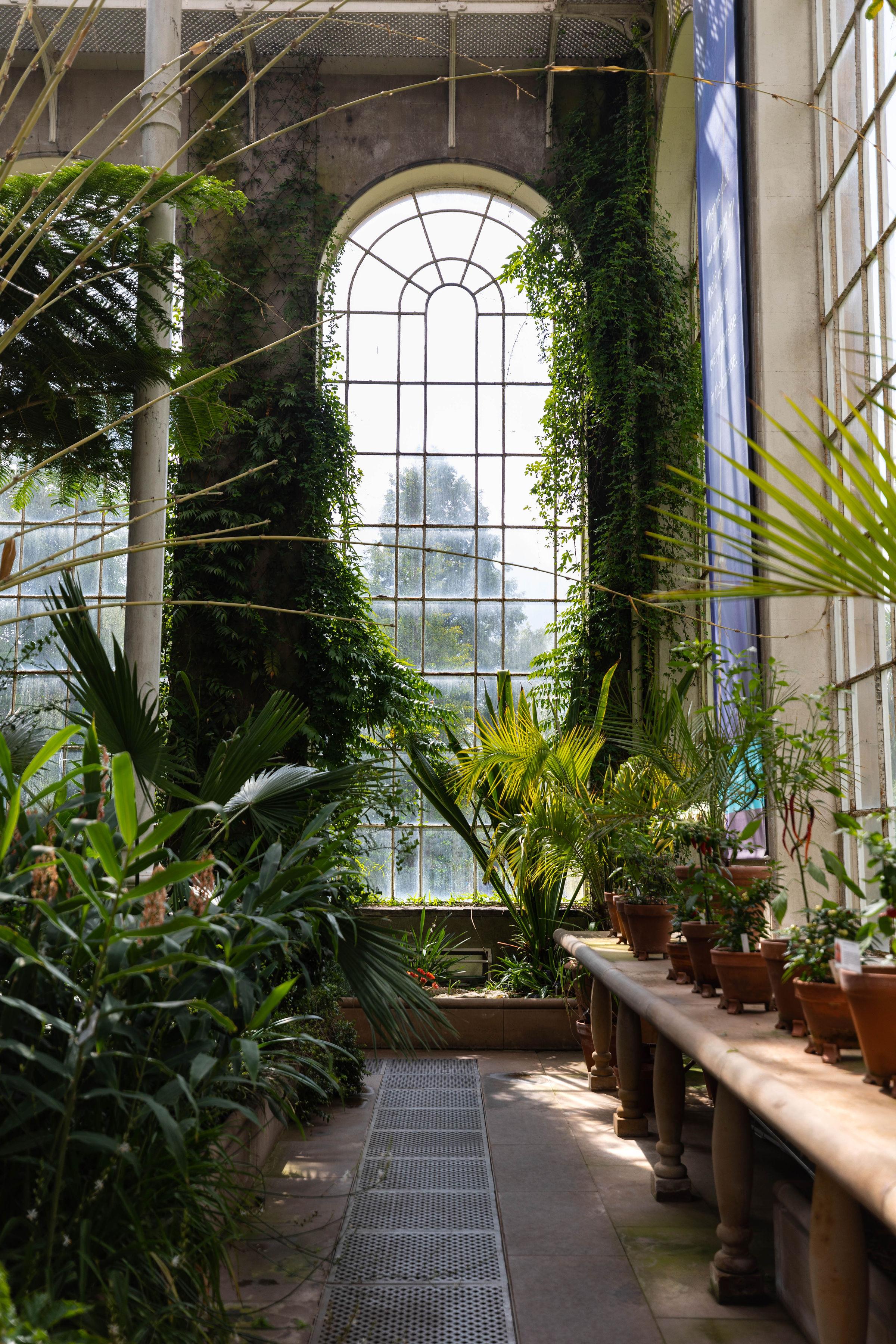 Temperate Palm House Glasshouse at Royal Botanic Gardens Edinburgh in Edinburgh, Scotland United Kingdom