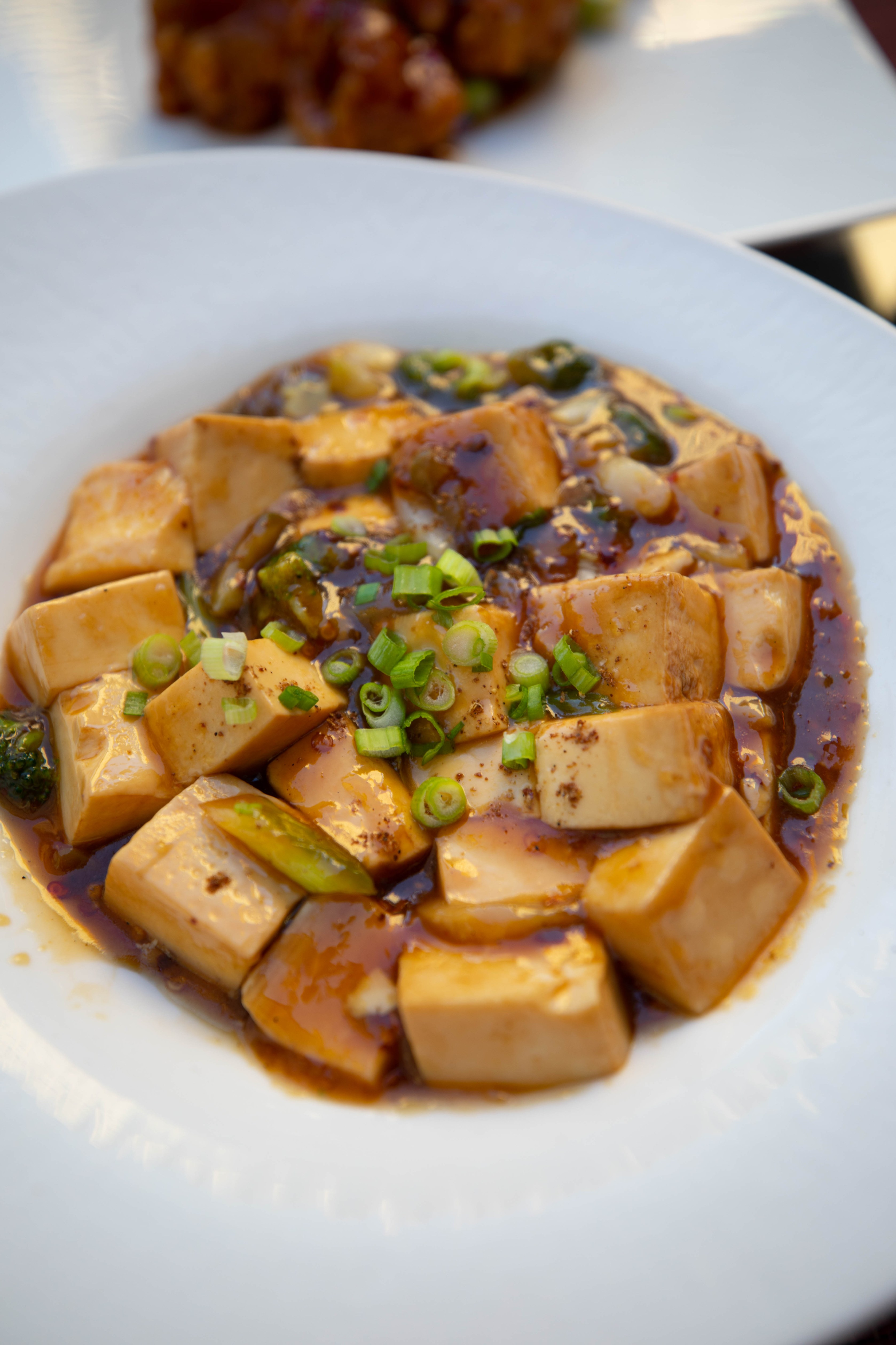Mapo Tofu at Shanghai Terrace Cantonese Delicacies Best Chinese Food in Chicago Award Winning Rooftop Dining Luxury Restaurants Midwest