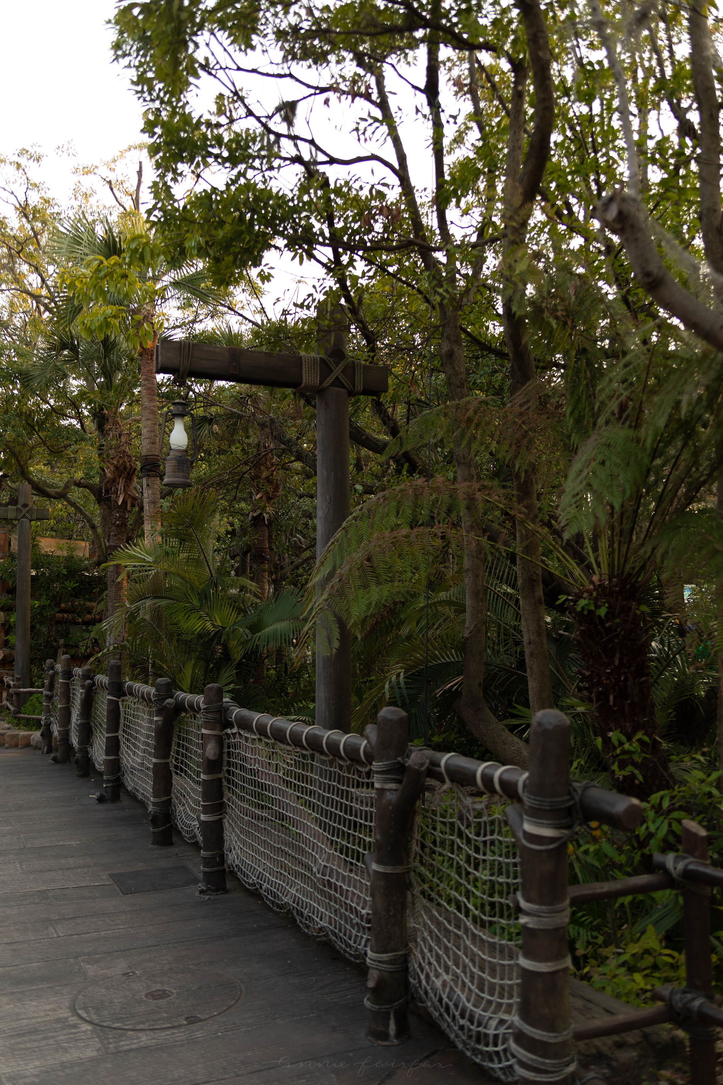 Lost River Delta at Tokyo DisneySea Japan