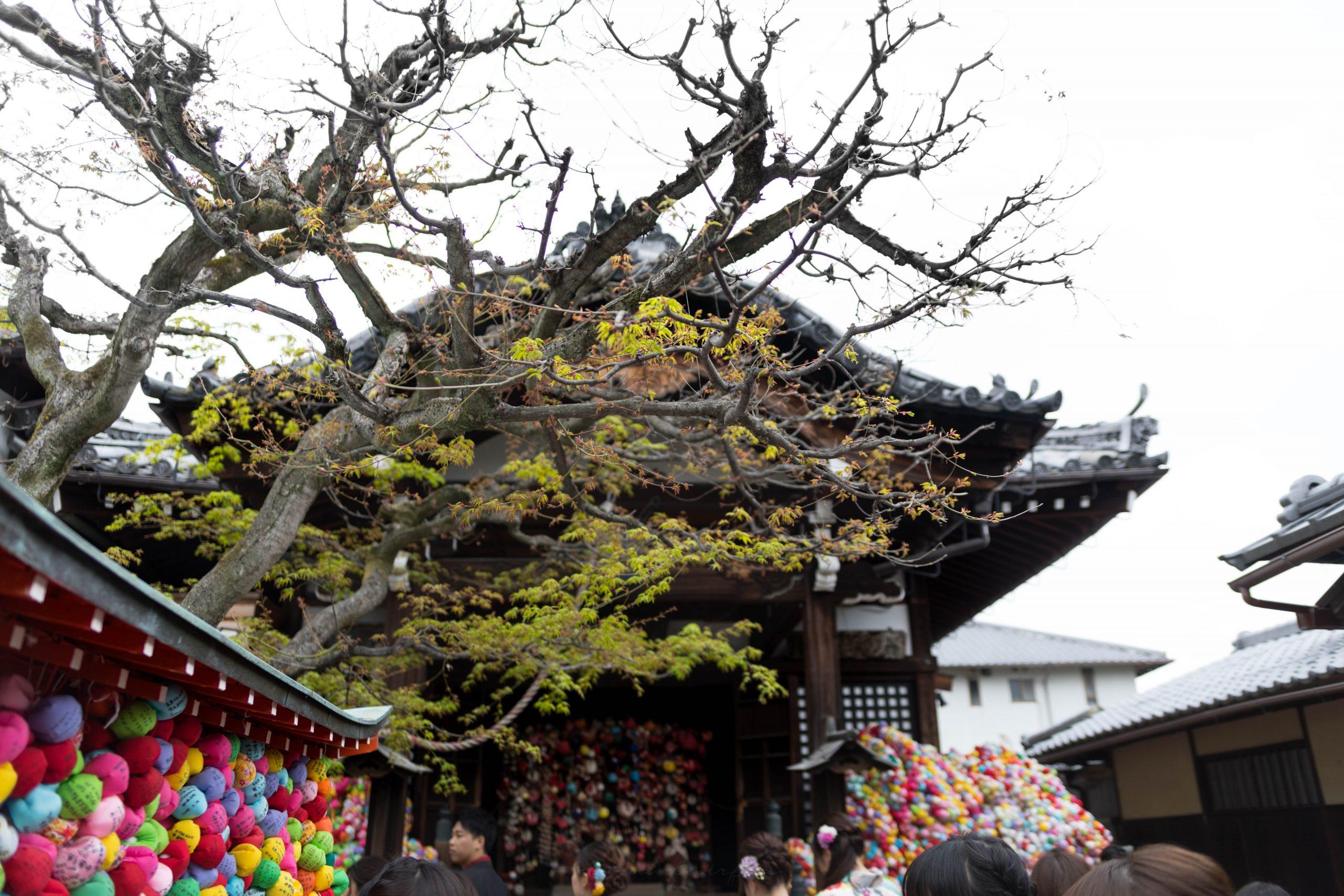 Colorful Ball Temple Yasaka Koshin-Do Templein Kyoto, Japan's Higashiyama District by Annie Fairfax
