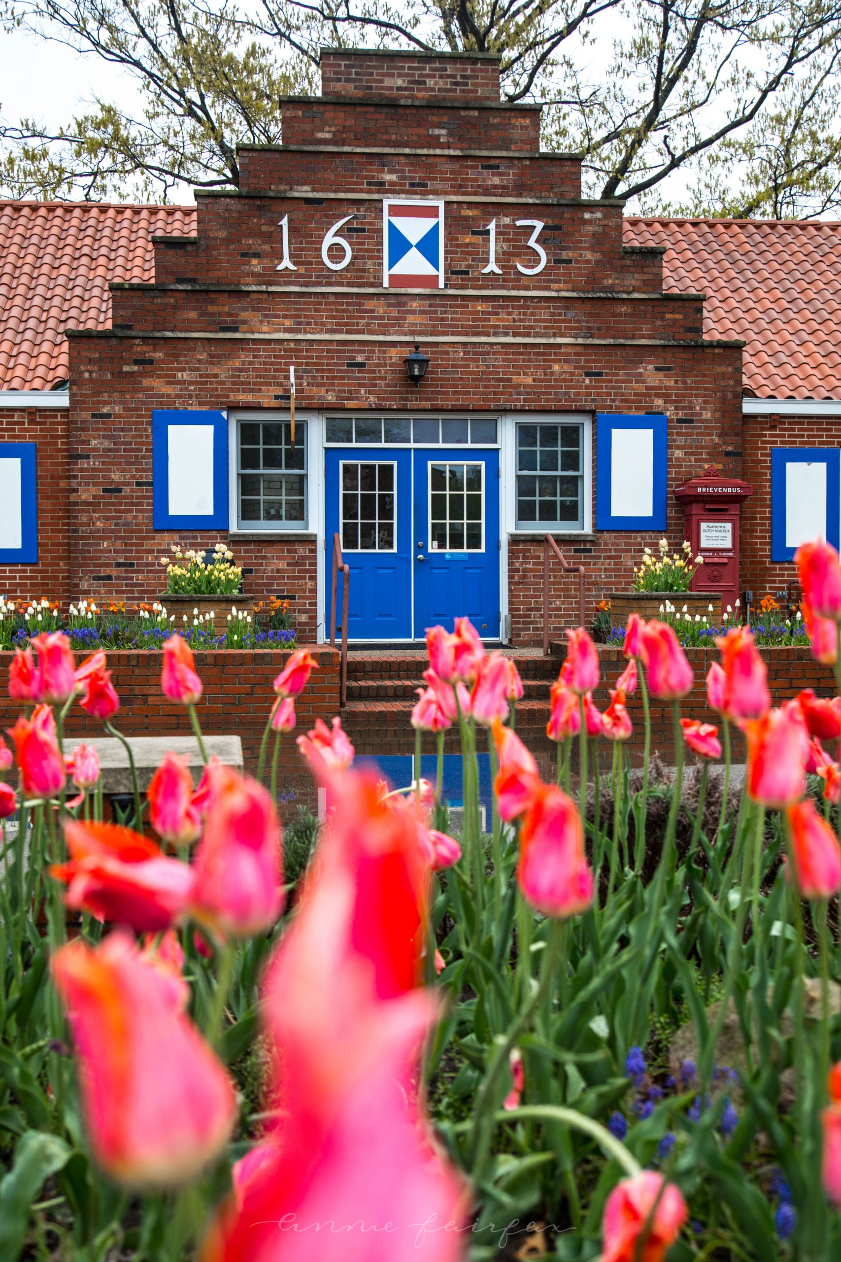 Holland Michigan by Annie Fairfax Dutch Tulips 1613 Village Building and Post Office Netherlands