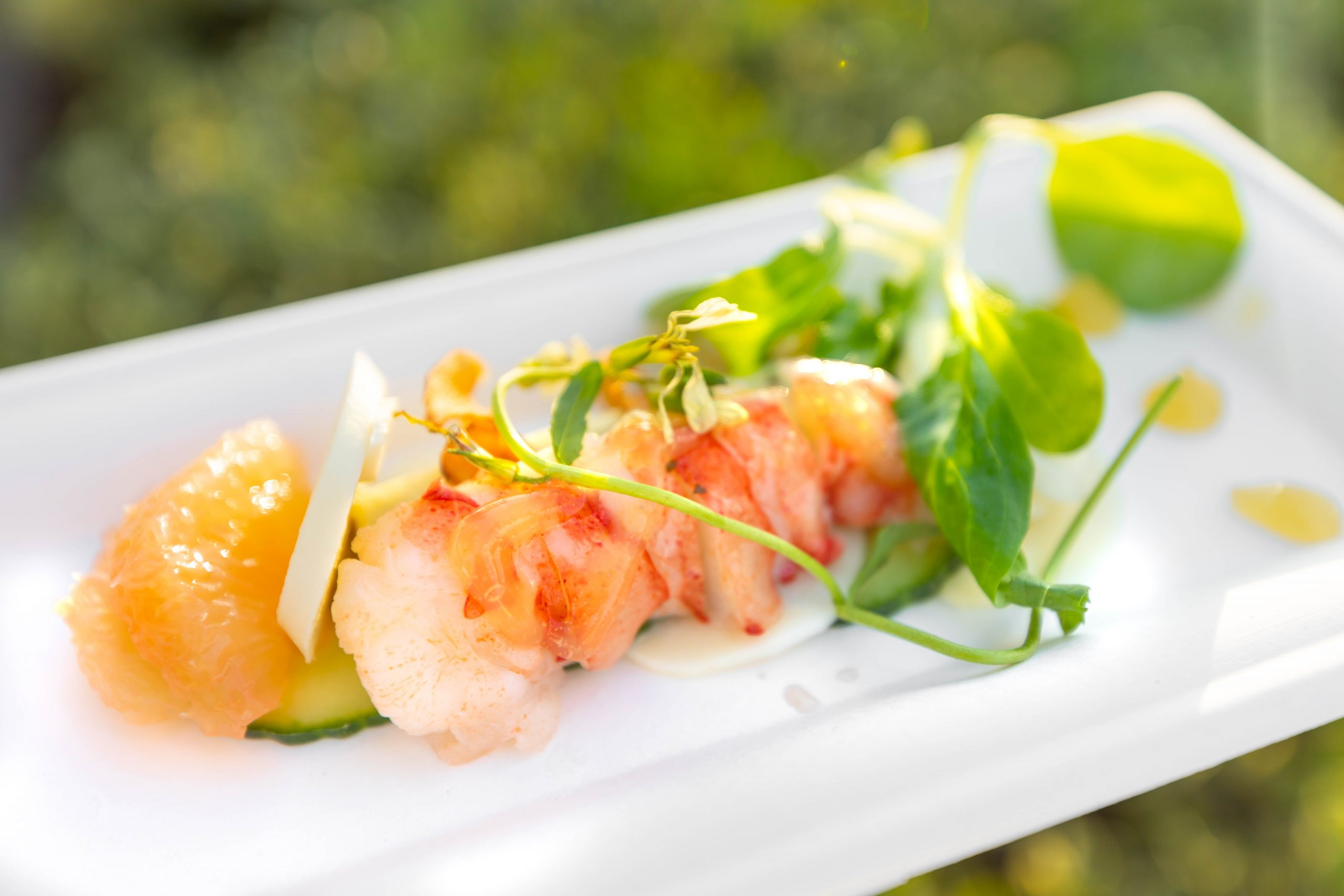 Meyer Lemon-poached Lobster Salad with Grapefruit-Rosé vinaigrette, yuzu-marinated hearts of palm, and avocado-yuzu panna cotta at Epcot Walt Disney World by Annie Fairfax