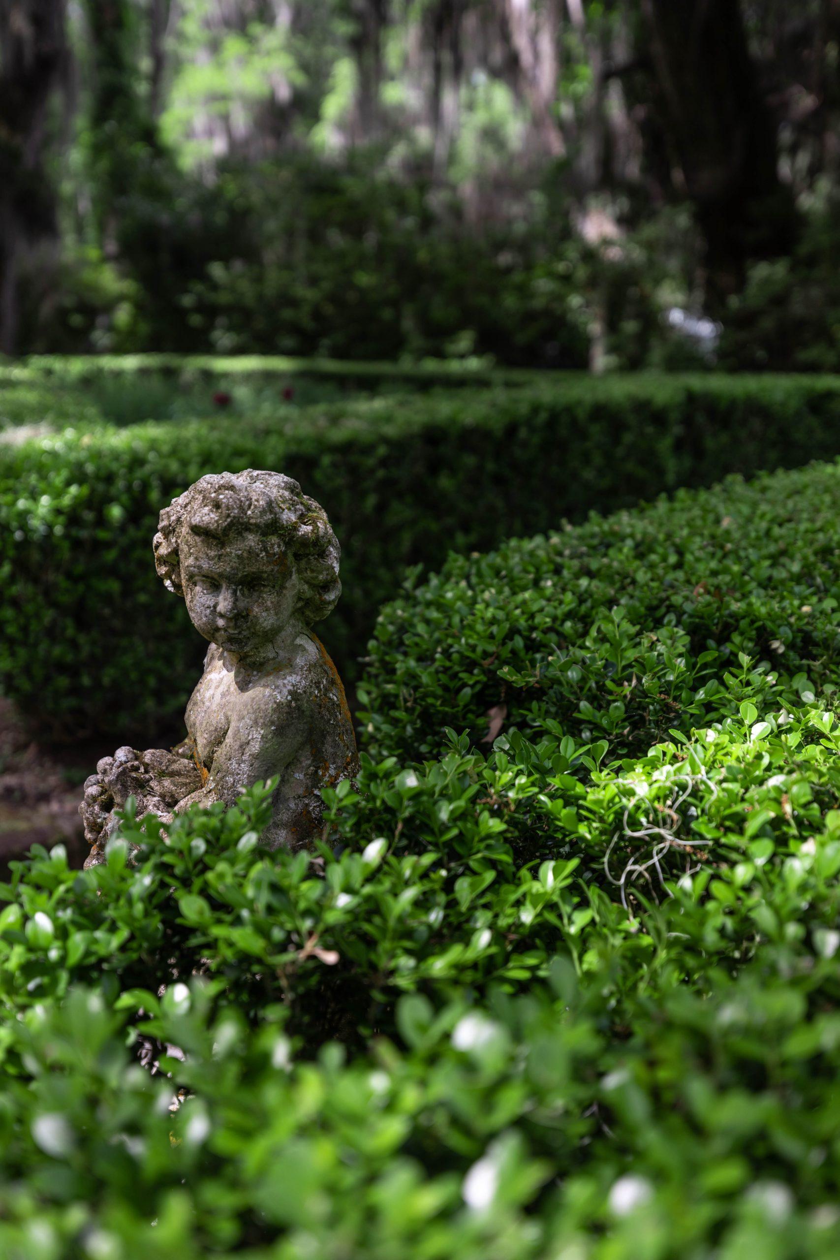 Boxwood Hedge Maze and Cherub Statue at Magnolia Plantation & Gardens Written & Photographed by Annie Fairfax