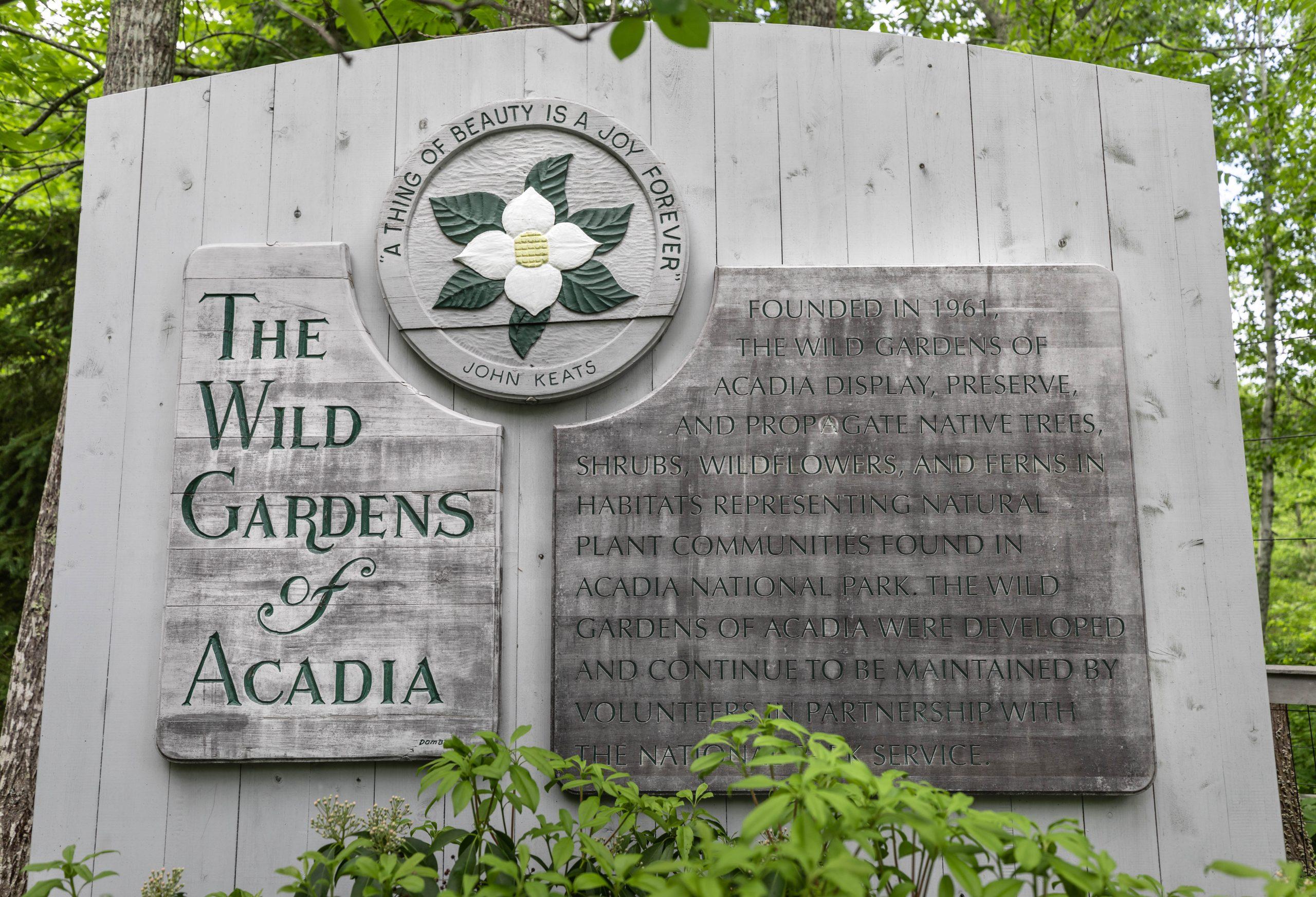 Wild Gardens of Acadia Botanical Garden inside Acadia National Park Mount Desert Island near Bar Harbor Maine Written and Photographed by Luxury Travel Writer Annie Fairfax