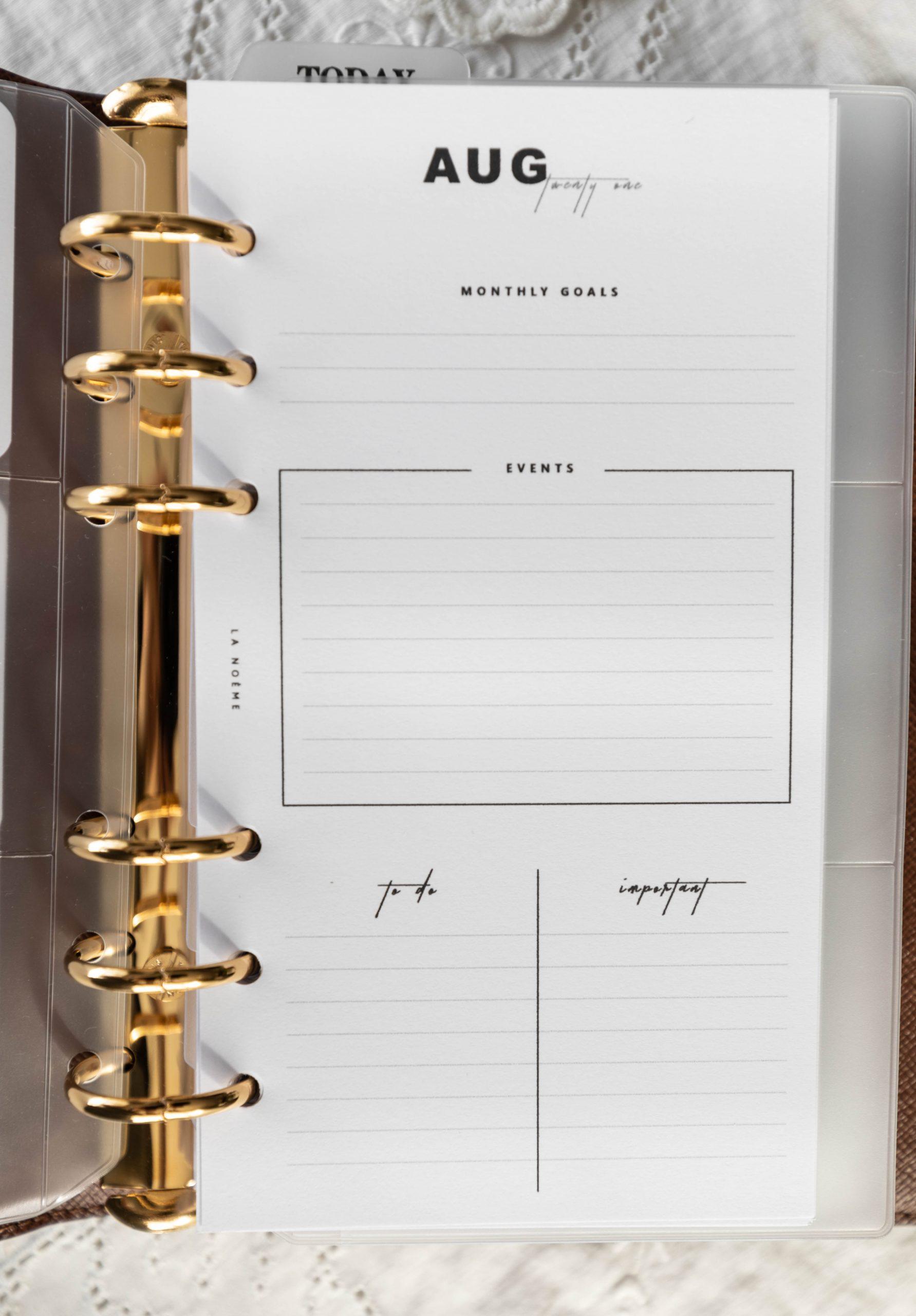 Monthly Agenda Overview Louis Vuitton Agenda Setup and Organization by Annie Fairfax