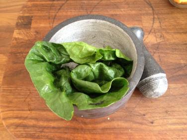 Fresh True Spinach