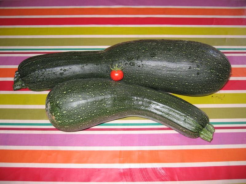Ma première tomate