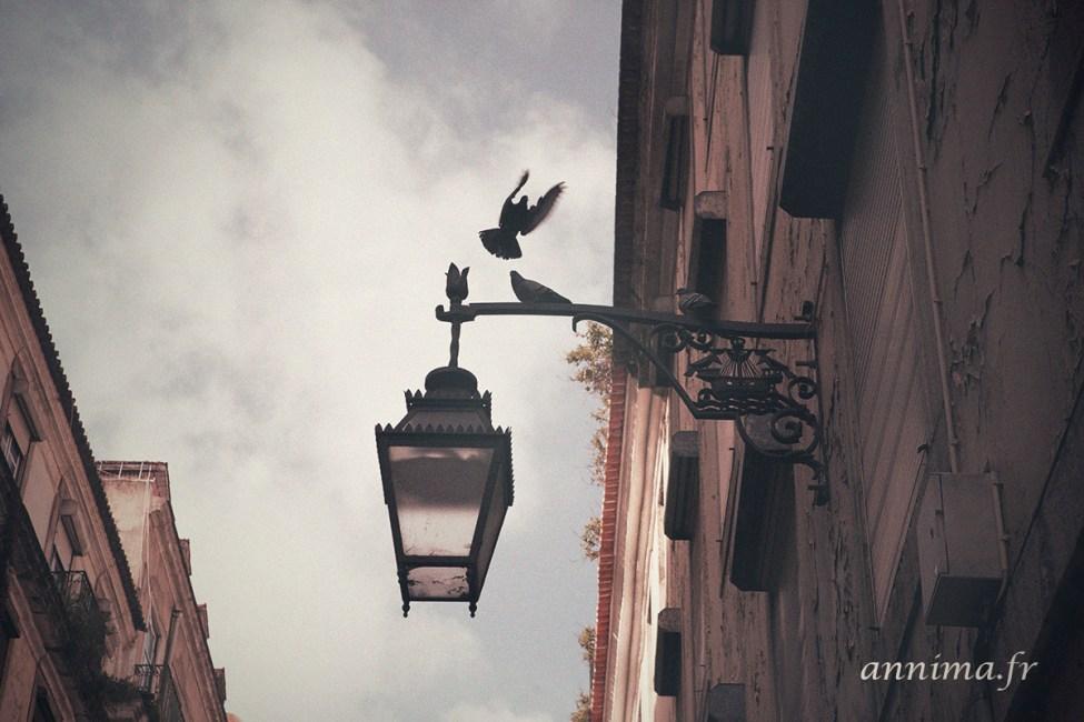 Lisbonne-vintage-15