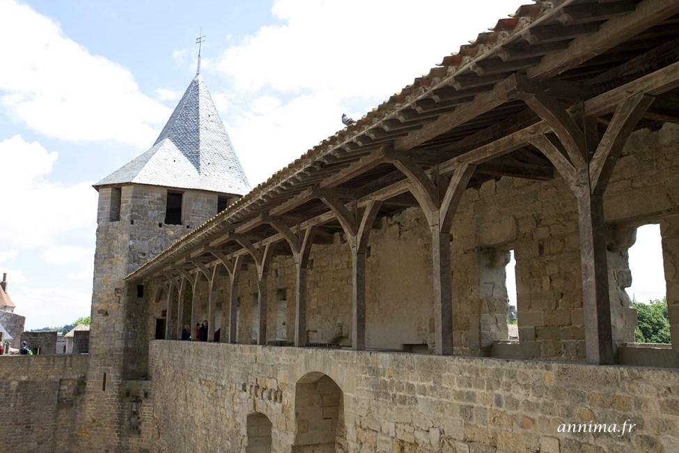chateau-carcassonne11