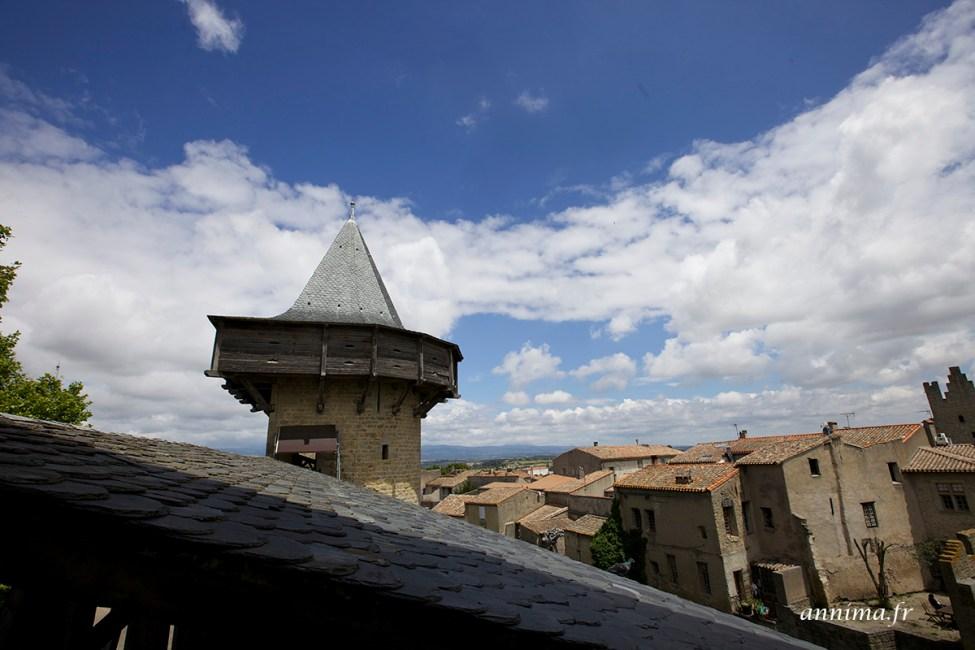 chateau-carcassonne14