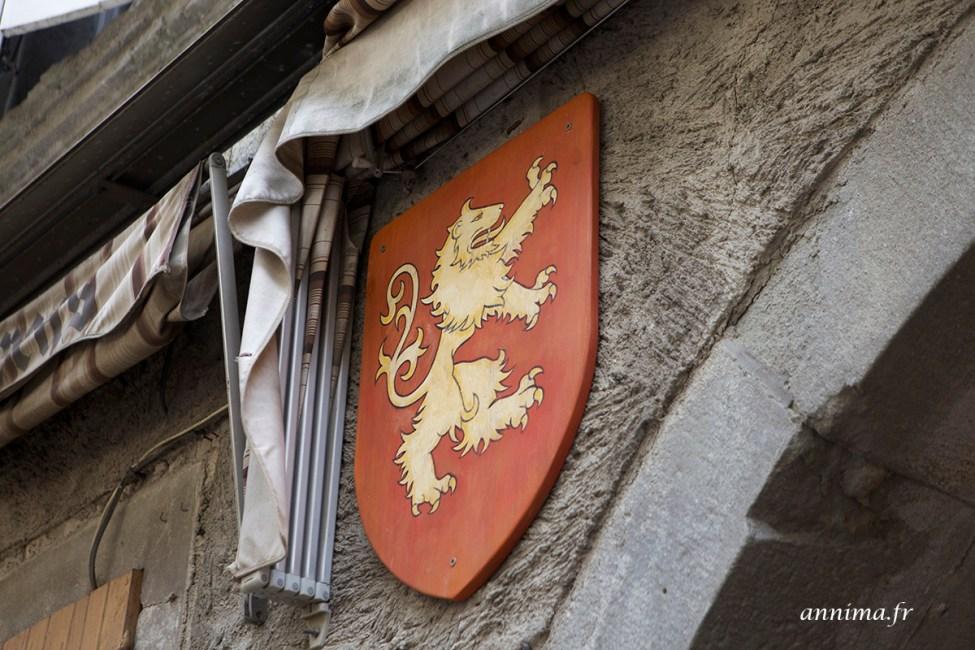 cite-carcassonne19