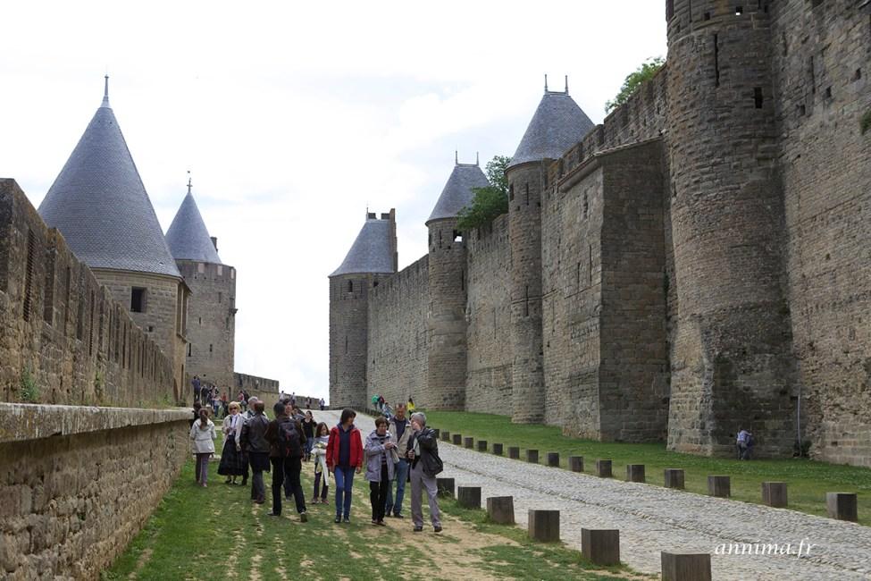 cite-carcassonne23