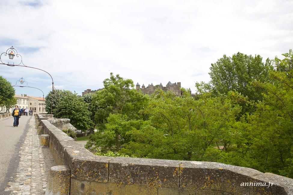 cite-carcassonne28