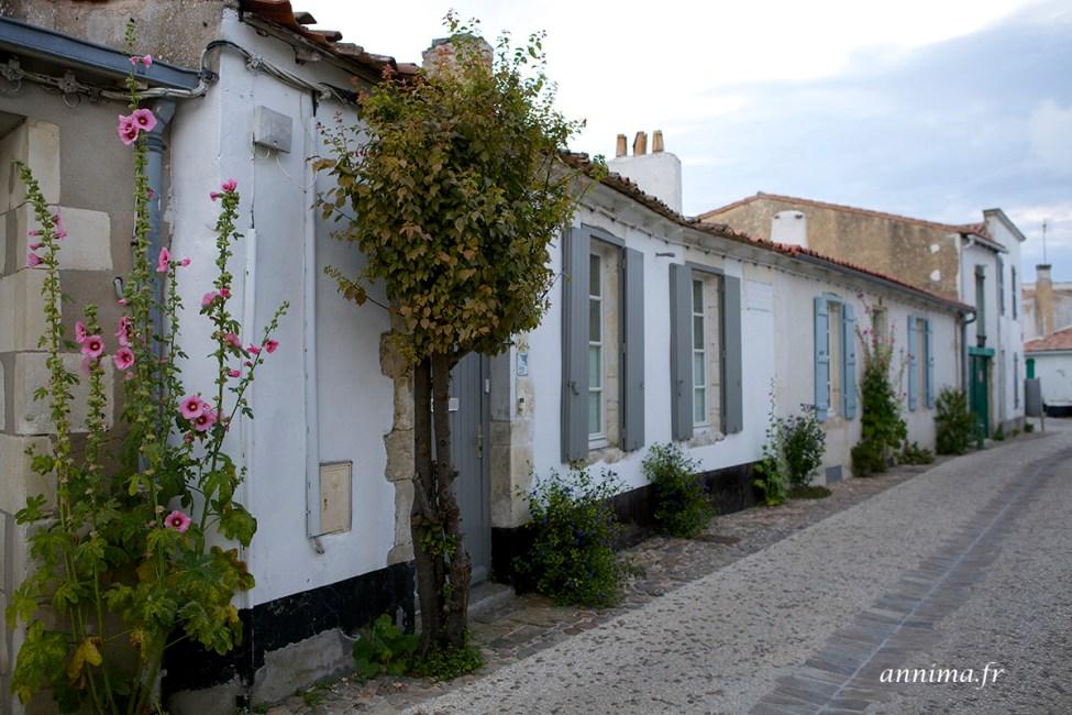 facades-Ré16