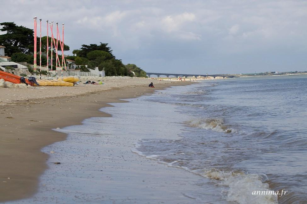 plage-Ré1